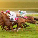در مورد مسابقات اسب سواری چه می دانید؟