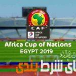 شرط بندی جام ملت های آفریقا 2019 رو به هیچ عنوان از دست ندهید