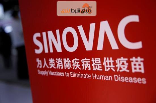 کارخانه واکسن سازی سینوواک چین